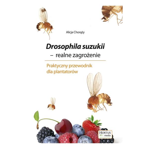Drosophila suzukii (realne zagrożenie) – Alicja Chorąży