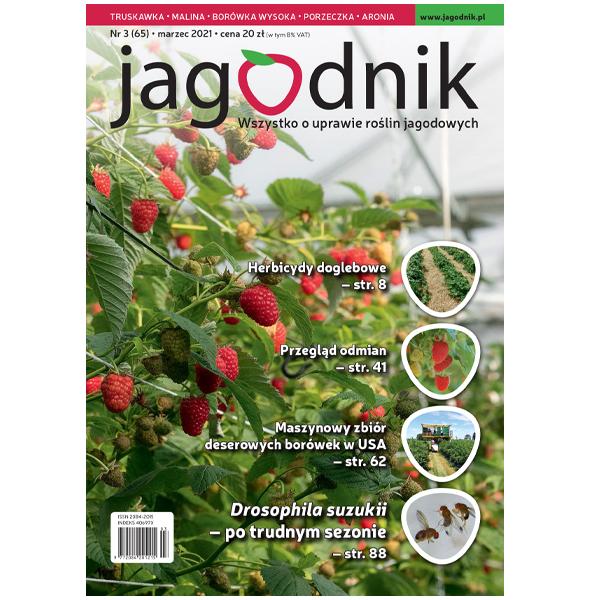 Pojedynczy numer Jagodnika – wydanie drukowane